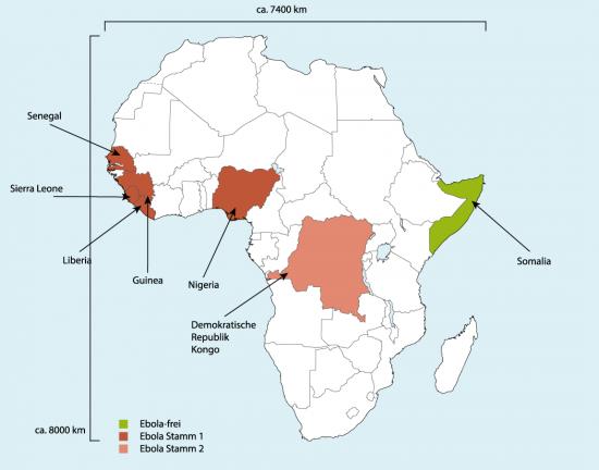 Ebola-Gebiete auf dem afrikanischen Kontinent