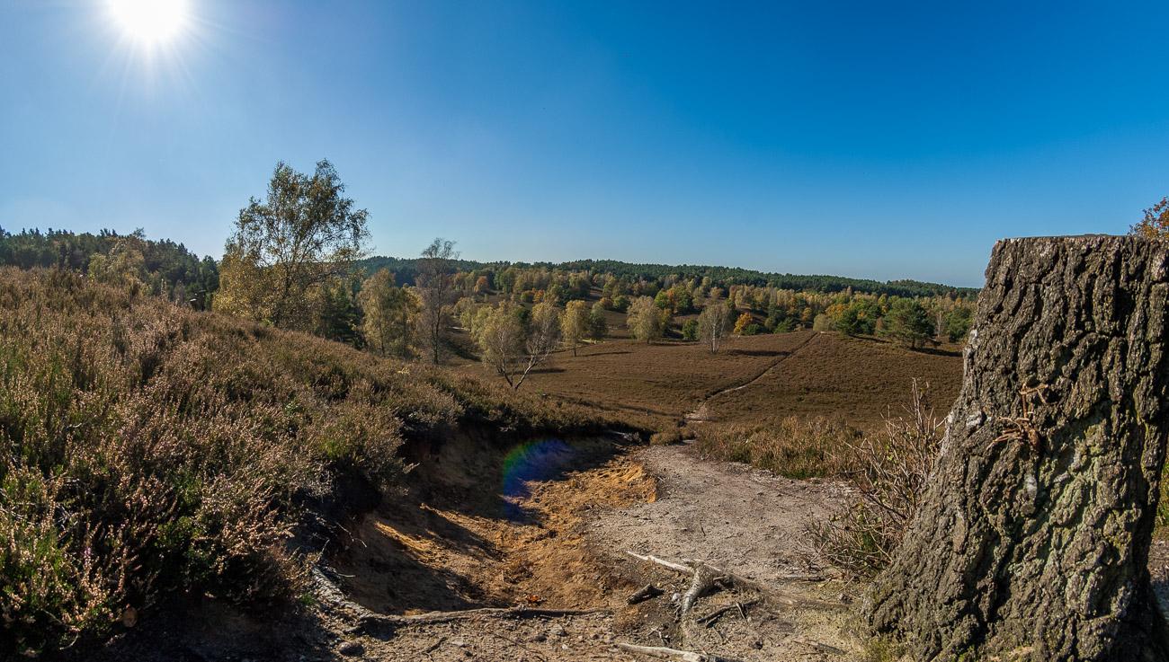 Übersicht Fischbeker Heide